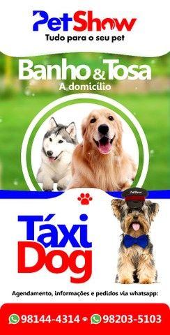 Táxi Dog e atendimento Domicíliar (cidade toda)