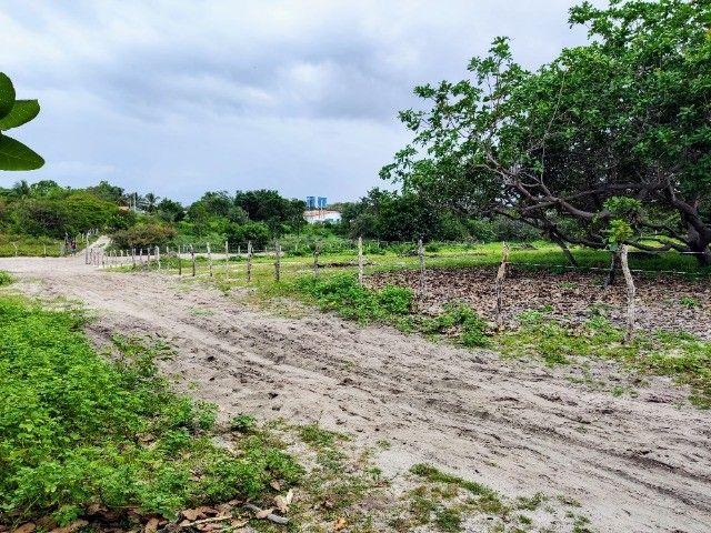 Lençóis Maranhenses - Lotes em Condomínio em Santo Amaro-MA - Foto 11