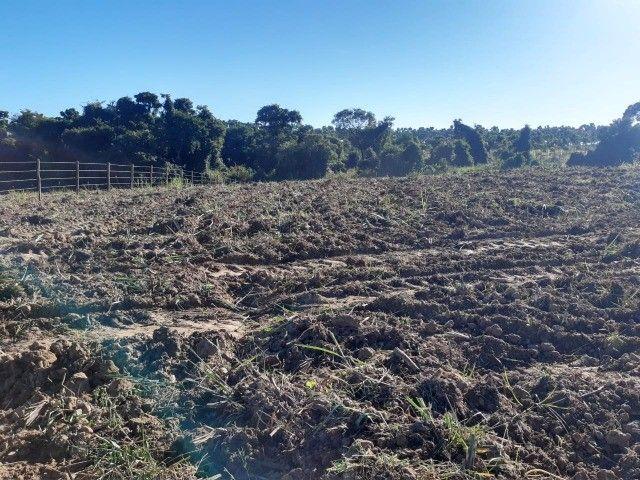 Artur Nogueira - Sitio 20.000m² - Vista panorâmica, mata c/ mina no fundo - Foto 8