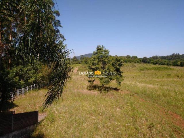 Sítio para alugar, 6500 m² por R$ 1.180,00/mês - Zona Rural - Colinas/RS - Foto 9