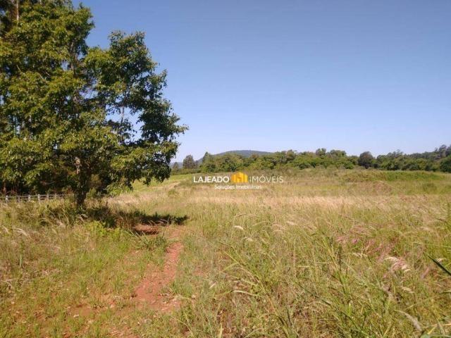Sítio para alugar, 6500 m² por R$ 1.180,00/mês - Zona Rural - Colinas/RS - Foto 18