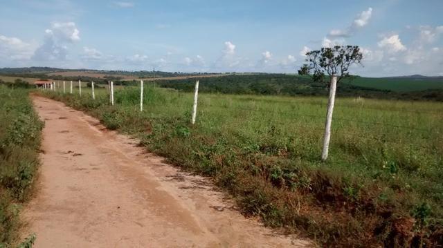 Fazenda de 4 alqueires para pecuária a venda na região de Caldas Novas GO - Foto 2