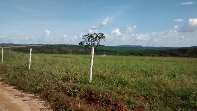 Fazenda de 4 alqueires para pecuária a venda na região de Caldas Novas GO - Foto 4