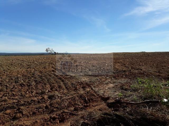 Fazenda no Mato Grosso 5.276 ha venda total - parcial ou permuta - Foto 2