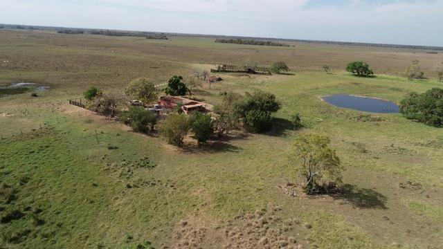 Fazenda formada em Poconé /MT com 1360 hectares - Foto 5