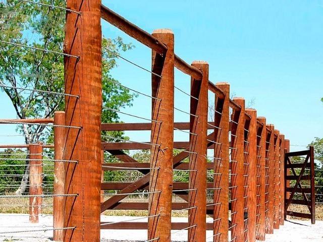 Eucalipto Tratado - 15 anos de garantia - Peças roliças - Foto 4
