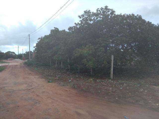 Terreno de 500 m² em região com grande potencial de crescimento - Foto 3