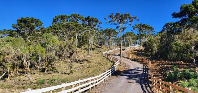 Sítio chácara em Urubici/área rural em Urubici - Foto 2