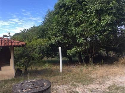 Fazenda à venda, Córrego da Minhoca - Três Marias/MG - Foto 5