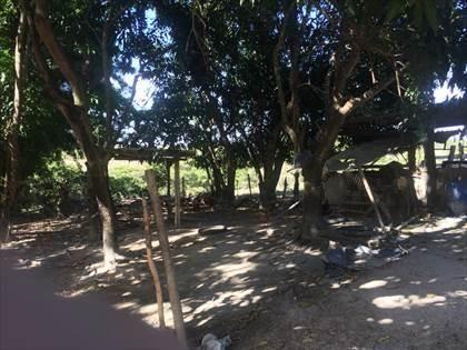 Fazenda à venda, Córrego da Minhoca - Três Marias/MG - Foto 6