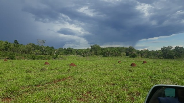 Fazenda dupla aptidão município Ituitataba  - Foto 12