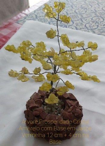 Vende-se 4 Árvores Prosperidade de Pedras Naturais: - Foto 5