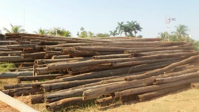 Postes de madeira