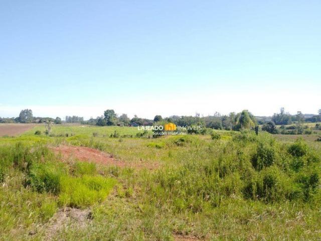 Sítio para alugar, 6500 m² por R$ 1.180,00/mês - Zona Rural - Colinas/RS - Foto 5