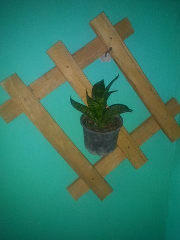 Suporte para plantas - Foto 2