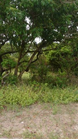 Terreno em Arembepe - Foto 5