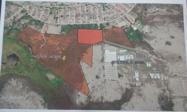 Área no centro de treinamento do Esporte Clube Bahia