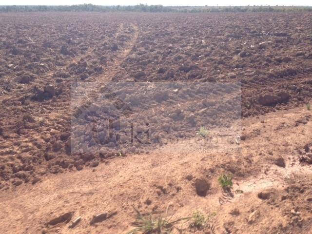 Fazenda no Mato Grosso 5.276 ha venda total - parcial ou permuta - Foto 3