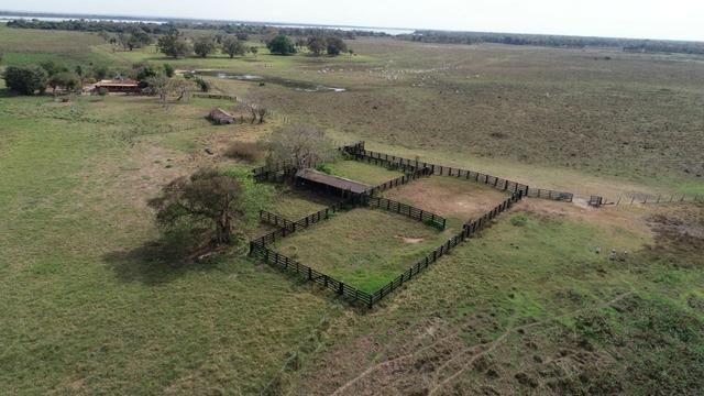 Fazenda formada em Poconé /MT com 1360 hectares - Foto 7