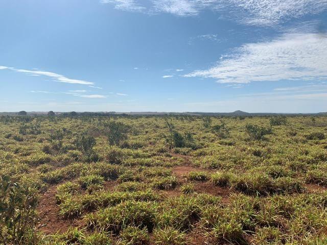 Fazenda no manso/ 700 hectares muito boa de água - Foto 11