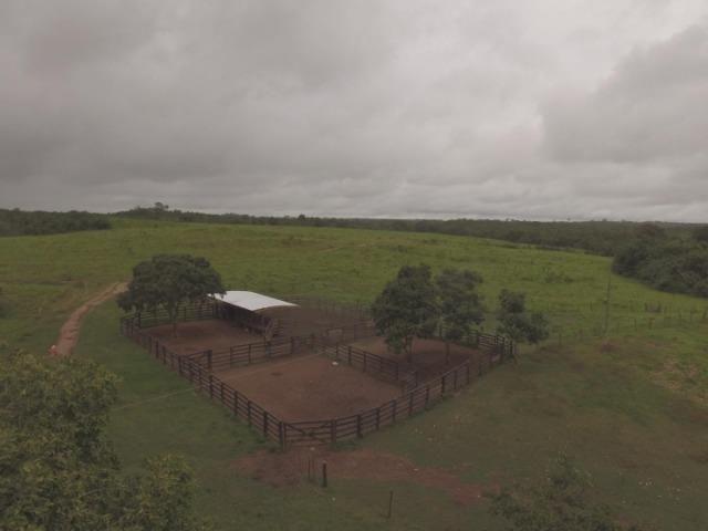 Fazenda no manso/ 700 hectares muito boa de água