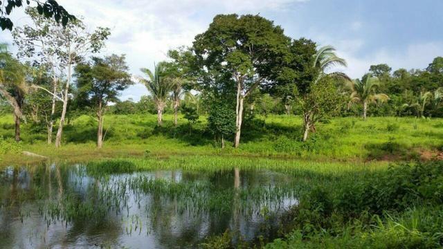 Fazenda em Rosário Oeste-MT 457 hectares boa de argila - Foto 10