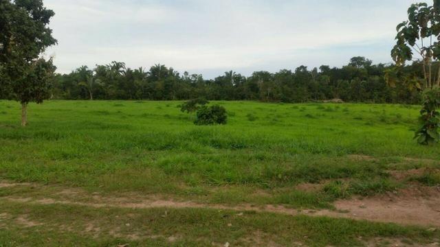 Fazenda em Rosário Oeste-MT 457 hectares boa de argila - Foto 6