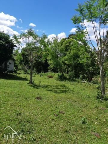 Chácara à venda com 2 dormitórios em Zona rural, Santa maria cod:10080 - Foto 6