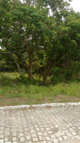 Terreno em Arembepe - Foto 3