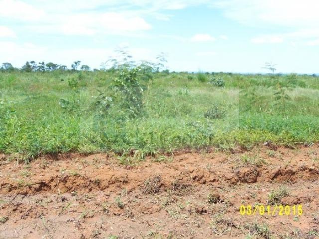 Fazenda no Mato Grosso 5.276 ha venda total - parcial ou permuta - Foto 13
