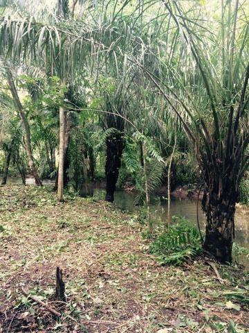 Fazenda em Rosário Oeste-MT 457 hectares boa de argila - Foto 12