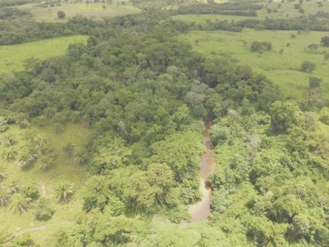 Fazenda em Acorizal MT/ 162 hectares sendo 150 formado - Foto 8