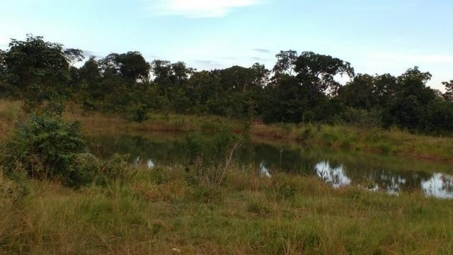 Fazenda 320 ha 100 km de Cuiaba - Foto 6