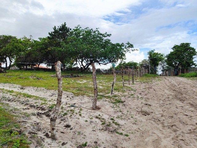 Lençóis Maranhenses - Lotes em Condomínio em Santo Amaro-MA - Foto 6