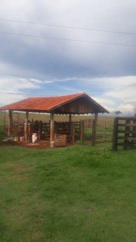 Fazenda dupla aptidão município Ituitataba