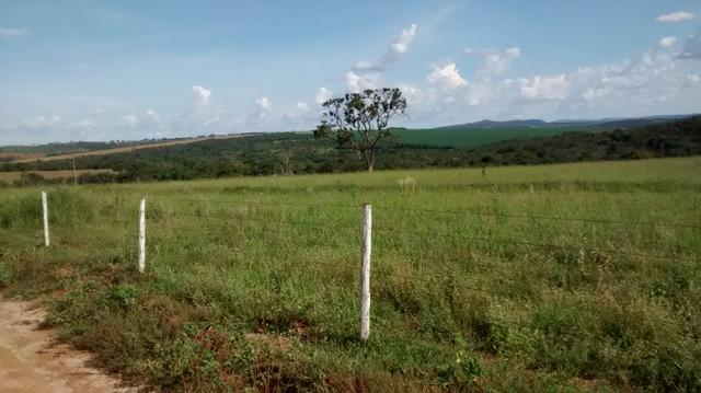 Fazenda de 4 alqueires para pecuária a venda na região de Caldas Novas GO - Foto 10