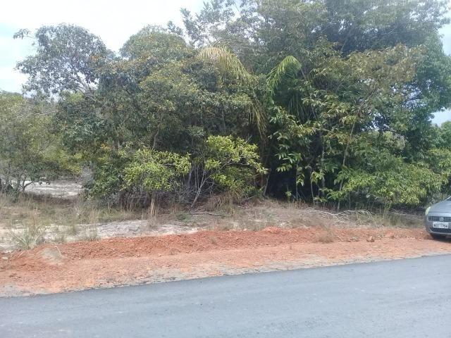 Transferencia,lote 1.000 M², Chacara Janauary 1 - Foto 12