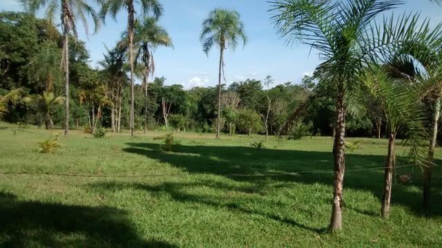 Fazenda de 4 alqueires para pecuária a venda na região de Caldas Novas GO - Foto 13