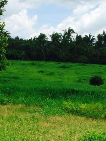 Fazenda em Rosário Oeste-MT 457 hectares boa de argila - Foto 5