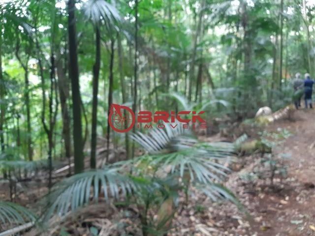 Ótimo terreno com 7390 m² no bom retiro. teresópolis- rj. - Foto 13