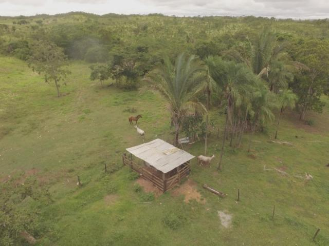 Fazenda no manso/ 700 hectares muito boa de água - Foto 2