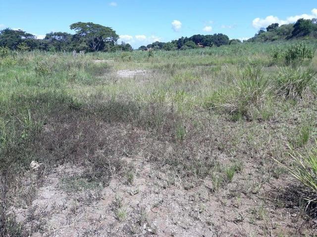 Belíssimo terreno em Guapimirim - Parada Ideal R$ 13 mil oportunidade!!! - Foto 2