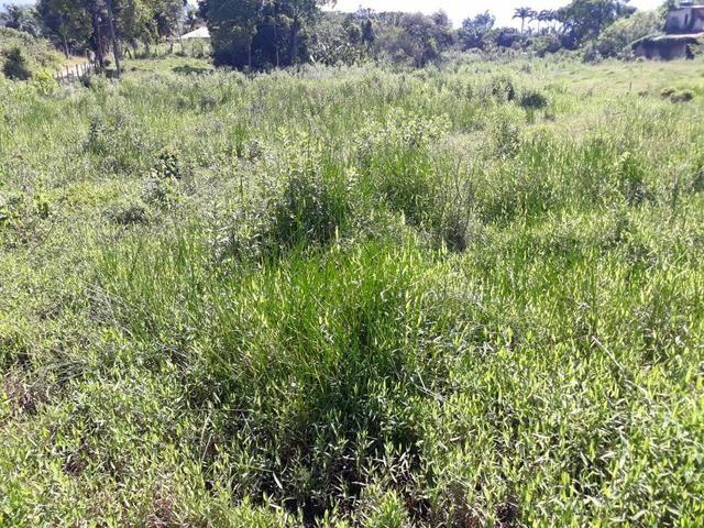 Belíssimo terreno em Guapimirim - Parada Ideal R$ 13 mil oportunidade!!! - Foto 9