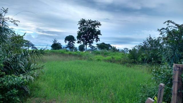 Fazenda 320 ha 100 km de Cuiaba