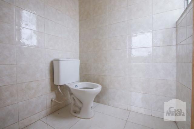 Apartamento à venda com 3 dormitórios em Havaí, Belo horizonte cod:239580 - Foto 14
