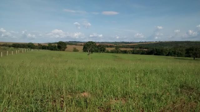 Fazenda de 4 alqueires para pecuária a venda na região de Caldas Novas GO - Foto 6