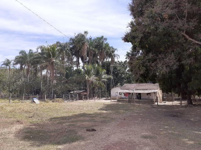 Fazenda 23 Alqueires, Formada, Plana, Terra Cultura, 1,2 Asfalto-Goiánésia - Foto 16