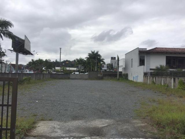 Terreno para alugar com 0 dormitórios em Glória, Joinville cod:L38201 - Foto 2