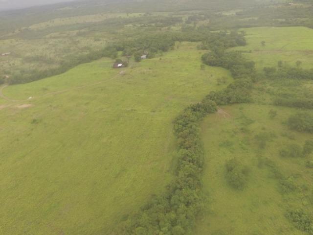 Fazenda no manso/ 700 hectares muito boa de água - Foto 7