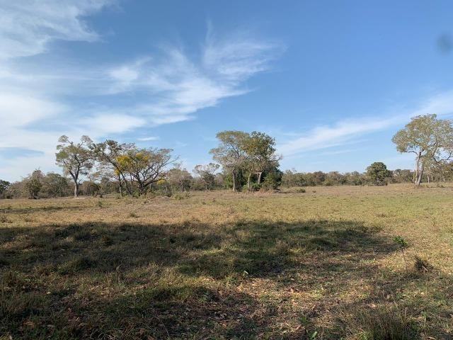 Fazenda formada em Poconé /MT com 1360 hectares - Foto 8